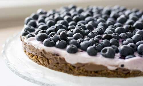 Some Delicious Sugar Free Dessert Recipes 3 - Some Delicious Sugar-Free Dessert Recipes